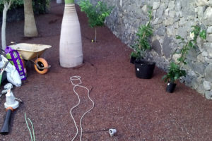 GREENGO-Tenerife-work-2